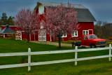 Sussex Farmland.jpg