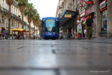 Montpellier11.JPG