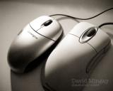 Jan 20: Mouse & Mouse