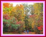 2011_fall__season__photos