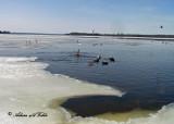 20110321 087 SERIES -  Deschenes Rapids.jpg