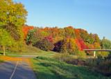 20111010 DSC00214  SERIES - Autumn Colours.jpg
