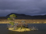 Transient Light Loch Awe