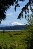 Mt St Helens and the Columbia River Gorge