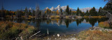 Schwabacher Landing Reflections, Grand Tetons NP - Fall 2011