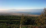 Road to Waimea