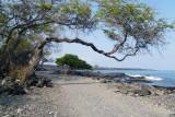 Between Anaeho'omalu and Kiholo Bays