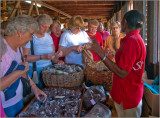 Buying Samples of the Spices