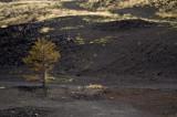 Etna (Piano Provenzana)