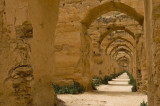 Meknes / Volubilis / Moulay Idriss