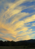 Fall Sky.jpg