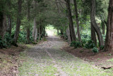Ruta Hacia el Area del Campamento Base