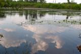 Reflejo de Nubes en una de las Lagunas Camino a Bethel