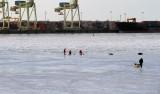 parc Longueil_2011 02 20_0160---sur glace---1000.jpg