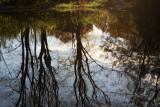 soleil_2011 11 06_0005--reflets-900.jpg