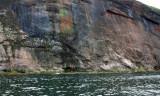 GASPÉSIA   1419--falaise-800.jpg