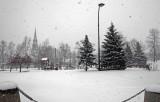 _MG_5943-parc et neige-900.jpg