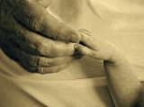In Loving Hands