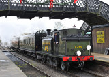 Bluebell Railway - Life In A Birdcage