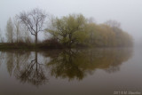 Islands of Fog