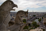 Gargoyles Watching Paris