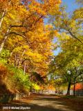 Fall in High Park, Toronto