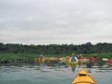Patuxent River shoreline