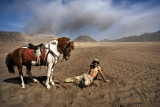 Madli, Tengger horseman, Indonesia.