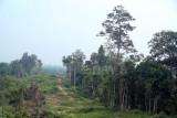 East coast Malaysia 2012