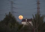 'Super Moon' rises over Alicante