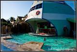 Kids Swim Up Juice Bar