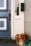blue door and December flowers
