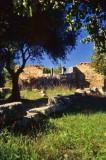 Grèce-038.jpg