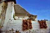 Grèce-113.jpg