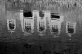 Terre Lointaine-079.jpg