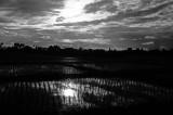 Terre Lointaine-135.jpg