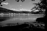 Terre Lointaine-193.jpg