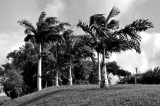 Terre Lointaine-259.jpg