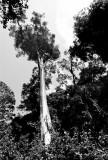 Terre Lointaine-338.jpg