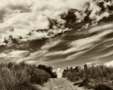 pathway in sand .jpg