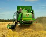 harvest_scenes_