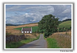 Fife Country Lane