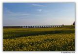 Broxburn Viaduct