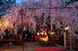 Suika-Tenman-gu Shrine