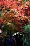 Koetsu-ji Temple