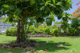 Pomare's, the Royals of Tahiti