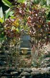 08C-22-The Cemetery