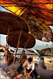 Parasols of Varanasi