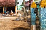 கிராமத்தில் சதுரம்