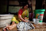 மெட்டி  • Madurai